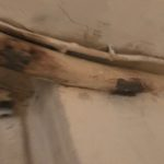 cage d escalier boite aux lettres renovation paris 76