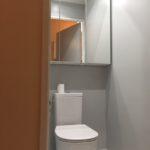 renovation salle de bain toilette Arpajon 91 (13)